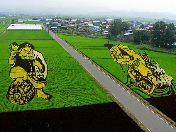 japanese crop circles