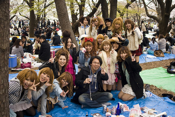 lucky guy yoyogi hanami