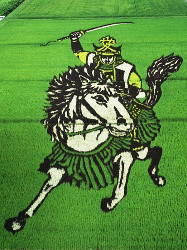 samurai rice art
