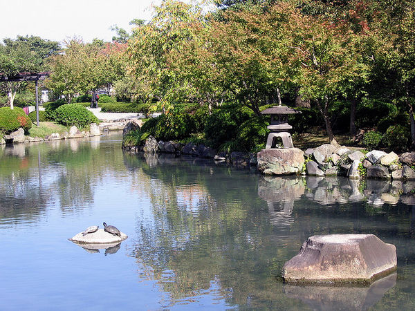 toji temple pond